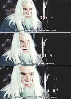 I love when Gandalf says this! This is possibly my favorite scene in the whole trilogy!