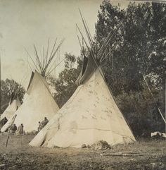 Stereoview Native American Indian N A Forsyth Crow Lodge with Decorations Crow Indians, Native American Indians, Great Love, Habitats, Nativity, Tapestry, Decorations, Culture, History