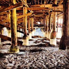 Under the crystal pier hotel. San Diego, CA