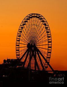 Morning Wheel Photograph by Nick Zelinsky