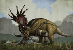 PaleoArt Collections