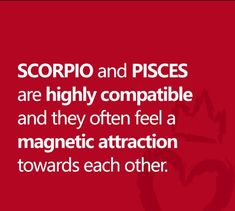 Our Real Zodiac is too accurate. Pisces Horoscope, Zodiac Compatibility, Scorpio Zodiac, Zodiac Quotes, Horoscopes, Zodiac Signs, Pisces Woman Scorpio Man, Spiritual Connection, Bunny