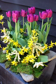 How to create a spring container garden, tips from a professional. Via Studio G.