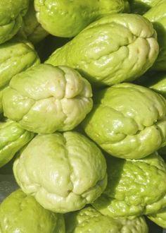 Chuchu é uma trepadeira rústica que pode ser cultivada em vaso