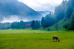 A Travel Guide to The Logar and Jezersko Valleys in Slovenia