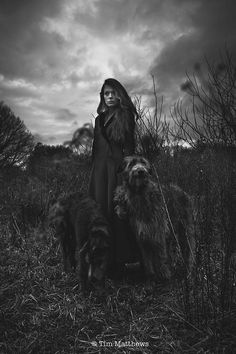 Soothsayer and apparently 'deerhounds' I'm thinking Irish wolfhound...but!                                                                                                                                                                                 More