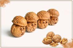 Why Walnuts look like Human Brain Twig Crafts, Fun Diy Crafts, Pine Cone Crafts, Nature Crafts, Driftwood Wall Art, Driftwood Crafts, Walnut Shell Crafts, Diy For Kids, Crafts For Kids