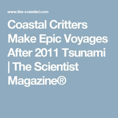 Coastal Critters Make Epic Voyages After 2011 Tsunami | The Scientist Magazine®