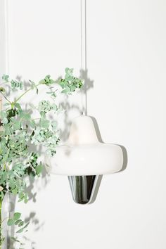 Shop the Swan Pendant Lamp and more contemporary furniture designs by La Chance Furniture at Haute Living. Glass Floats, Door Accessories, Lighting Manufacturers, Light Table, Hanging Lights, Contemporary Furniture, Pendant Lamp, Swan, Design Inspiration