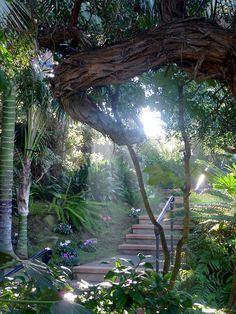 Sun & Shadows.  Meditation Gardens,  Encinitas CA