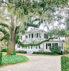 "J A S O N B L A C K on Instagram: ""It's not good because its old its old because its good! I think this pretty much sums up the South and especially historic Beaufort, SC . .…"""