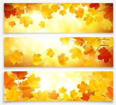 Vector banners with autumn leaves vector set 01 - https://www.welovesolo.com/vector-banners-with-autumn-leaves-vector-set-01/?utm_source=PN&utm_medium=wcandy918%40gmail.com&utm_campaign=SNAP%2Bfrom%2BWeLoveSoLo
