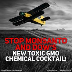 Deadline September 8th: Stop Monsanto and Dow's New Toxic GMO Chemical Cocktail - Say NO to Agent Orange and Roundup GMOs! http://action.fooddemocracynow.org/sign/stop_Monsanto_and_Dows_new_toxic_GMO_chemical_cocktail_now/?t=4&referring_akid=1309.519397.zJNjD1 #GMOs #AgentOrange #Corn #Soy #StopMonsanto #DumpDow