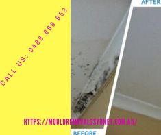 We offer expert mould inspection, removal, and rising damp Sydney. Rising Damp, Plastic Cutting Board, Sydney, How To Remove, Cleaning, Ads, Home Cleaning