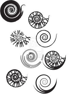 Clockwork Spiral Tattoo Designs by ~UrbanManitou on deviantART a small one of the numerals would be awsome! Spiral Tattoos, Star Tattoos, Wrist Tattoos, Tattoo Hip, Hip Tattoos, Dragon Tattoos, Nautilus Tattoo, Koru Tattoo, Fibonacci Tattoo