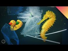 How Much Plastic is in the Ocean? Great Pacific Garbage Patch, Ocean Turtle, Ocean Video, Monterey Bay Aquarium, Make More Money, Ecology, Climate Change, Plastic, Fish Benefits