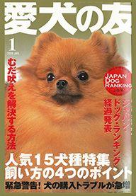 愛犬の友 2008年1月号