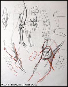 Analytical Figura Disegno SP08: Week 8 - Leg & Knee Struttura Demo