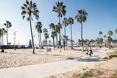 venice-beach.jpg (2000×1333)