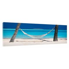Great Big Photos Nap Time Photographic Print on Wrapped Canvas