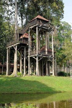 Awesome Treehouse Masters Design Ideas that will Make You Dream to Have It - DecOMG Silo House, My House, Treehouse Masters, Beautiful Tree Houses, Cool Tree Houses For Kids, Tree House Designs, Tree Tops, In The Tree, House In The Woods