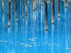 美瑛の人気観光地「青い池」は北海道の旭川近郊にあり、白金温泉に向かう白金街道という道路沿いに看板があって、そこを進むとこの神秘的な池に巡り会えます。...