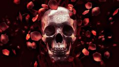 2560x1440 roses+skull+full+res.jpg (2560×1440) | ༺♡༻ ARTWORK | Pinterest | Skull  wallpaper, Wallpaper and Digital art