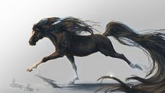 A Black Horse Galloping Animal HD Wallpaper Horse Wallpaper, Lion Wallpaper, Animal Wallpaper, Brown And White Horse, White Horses, Black White, Fantasy Paintings, Animal Paintings, Fire Horse