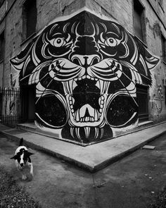 Street Art ( guess the little dog might have been frightened ? )