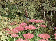 herbstlicher Garten mit blühender Fetthenne und Goldrute
