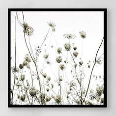 Framed Print - Summer Silhouettes #westelm