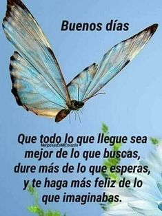 images in 2019 Morning Love Quotes, Morning Greetings Quotes, Morning Images, Good Day Messages, Spanish Greetings, Blue Bird Art, Beautiful Love Pictures, Aging Quotes, Morning Blessings