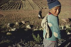 William Albert Allard | Eduardo Ramos with his Dead Sheep, Puno, Peru | Steven Kasher Gallery