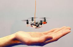 Large, unmanned aerial vehicles look like regular (albeit menacing) airplanes. But there are also small drones that resemble big insects, and they're being programmed to act like them too. Insectile drones could evolve into useful minions to track, map, and respond to climate change.