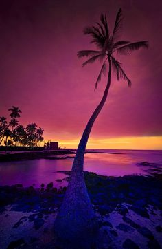 City of Refuge on the Big Island of Hawaii in all its beauty. by Yves Rubin