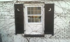 I made the shutters,