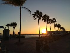 Things to Do in Gulfport Florida Clearwater Beach Florida, Florida Beaches, Gulfport Florida, Stuff To Do, Things To Do, Waterfront Restaurant, Art Walk, Vacation, Sunset