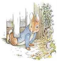 the wonderful Peter Rabbit by Beatrix Potter