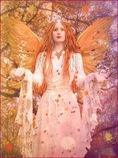 Orange fairy princess
