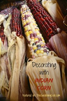 Fall is the perfect time to decorate with Indian Corn.  See my round up for lots of ideas for decorating with this fun fall supply.  http://thegardeningcook.com/decorating-with-indian-corn/