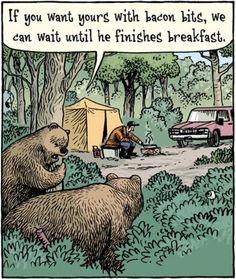 Bacon Humor: Bears love bacon