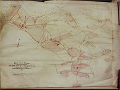 1863 Estate Map, Dawley Magna, Shropshire, England