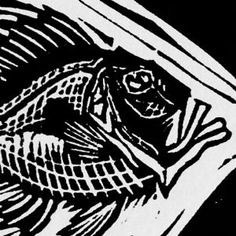 John Dory | Linocut | Lino Print