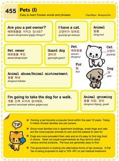 Easy Conversational Korean – 455 | Learning Korean & Lovin' Korea