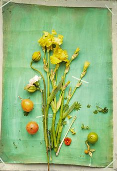 Dietlind Wolf. May 2013 Issue - Flowers taped to green-hued paper