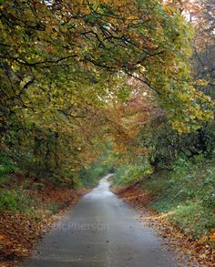 English farm road