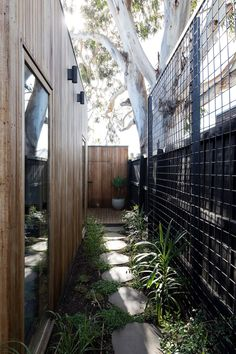 House: 43 Henry Street Northcote Wire mesh along fence to support a growing wall of jasmineWire mesh along fence to support a growing wall of jasmine House Landscape, Garden Landscape Design, Home Garden Design, Outdoor Walls, Outdoor Living, Side Yard Landscaping, Landscaping Ideas, Moderne Pools, Narrow Garden