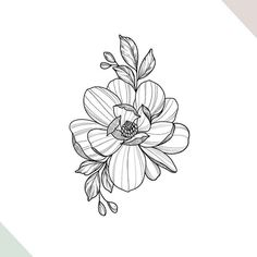 ▷ 1001 + flower drawing images to learn how to draw - Flower in perspective, drawing of cool flower for tattoo, learn to draw easily drawing easy to r - Flower Drawing Images, Flower Tattoo Drawings, Flower Tattoo Back, Floral Drawing, Flower Tattoo Designs, Back Tattoo, Tattoo Sketches, Flower Tattoos, Tattoo Arm