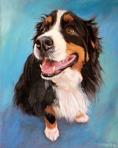 Bernese Mountain Dog Portrait. Custom oil painting by BFF Pet Paintings by David Kennett. Dog painting, dog portrait, custom dog portrait, do artist.