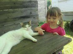 Vláďa Hary - Výlet s dcerou v sedačce Sport, Cats, Animals, Deporte, Gatos, Animales, Animaux, Sports, Animal